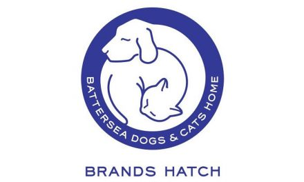 BATTERSEA BRANDS HATCH WINTER PET CARE ADVICE