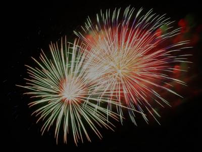 Dartford Lions Fireworks November 2015