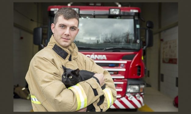 Life Saving oxygen masks for animals coming to Kent