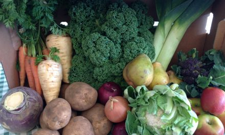 Stanhill Farm in Wilmington is pleased to offer an online farm shop, delivering fresh produce direct to your door