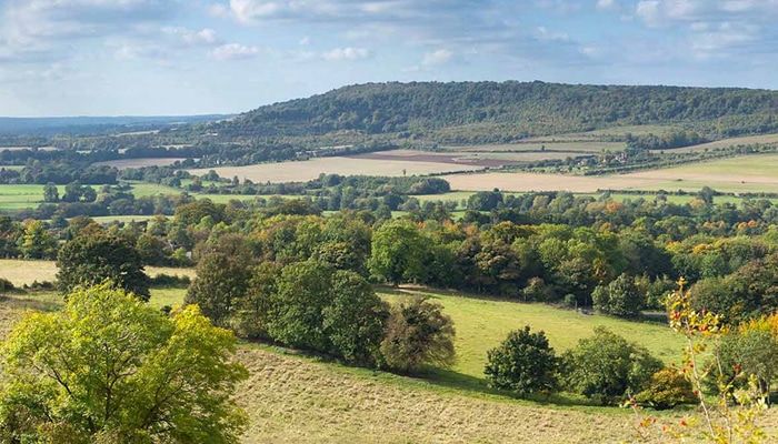 The Darent Valley – have your say