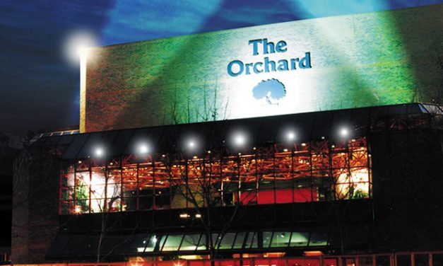 Vote for the Orchard Theatre to win the UK's most welcoming Theatre Award 2016