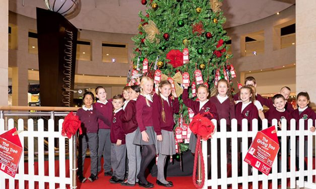 Bluewater's Giving Tree lights up Christmas for local children