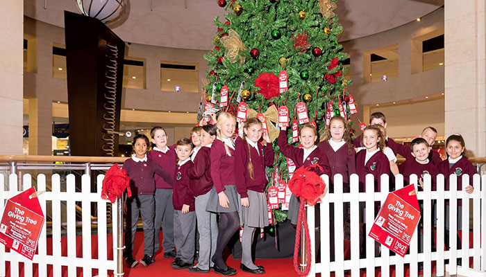 Bluewater Giving Tree Bean Primary School