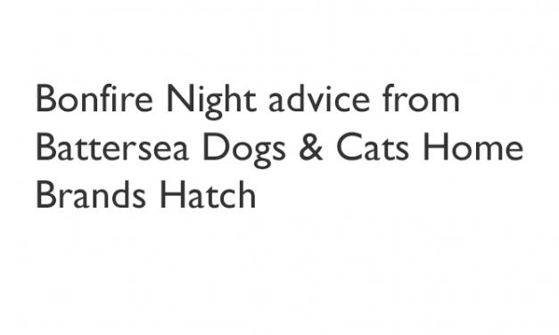 Battersea Dogs Cats Home Brands Hatch