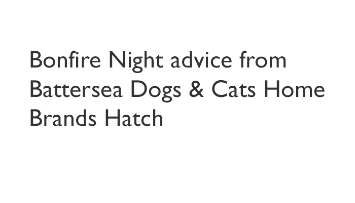 Bonfire Night advice from Battersea Dogs & Cats Home Brands Hatch