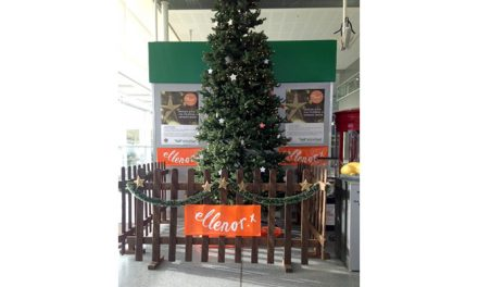 Support ellenor at  Ebbsfleet International Station this Christmas