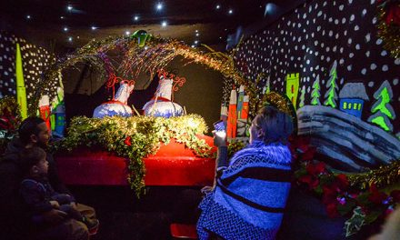 Coventry Transport Museum launches appeal to locate 'lost' Co-op sleighs