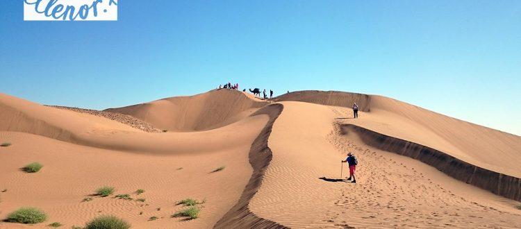 ellenor Trek the Sahara