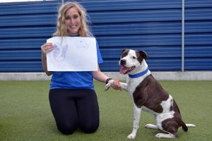 Battersea Indie the Staffie