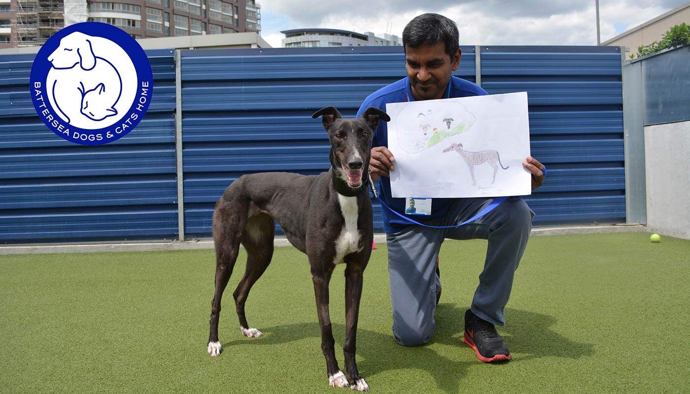 When I grow up: Children give Battersea's loneliest dogs a voice