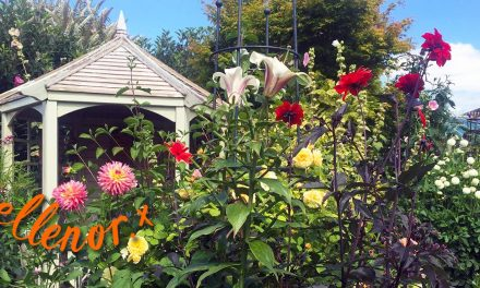 Glorious Gardens Raises Thousands for Hospice