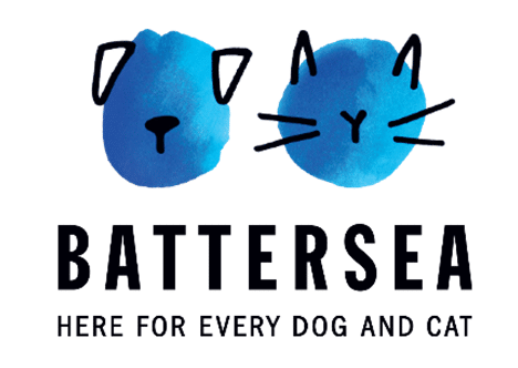 BATTERSEA BRANDS HATCH ISSUES ADVICE ON SEPARATION ANXIETY AND POST-LOCKDOWN ROUTINES