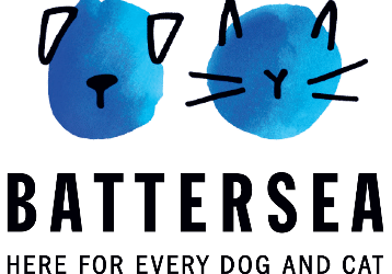HOW TO KEEP YOUR DOG ENTERTAINED DURING LOCKDOWN: BATTERSEA BRANDS HATCH'S TOP TIPS